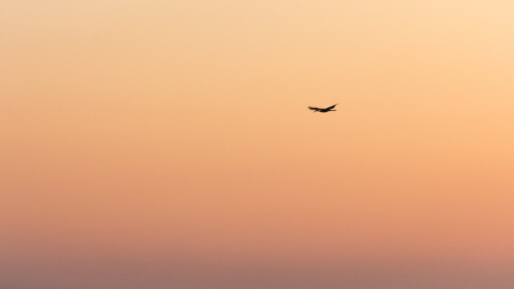 Tweni Sunrise-2.jpg