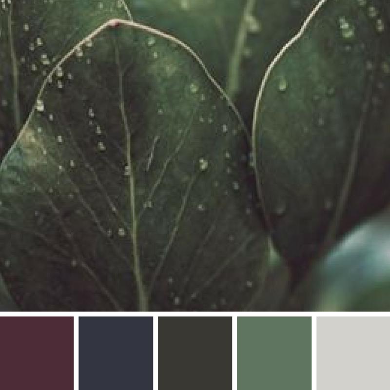 oribi-gorge-colour-palette