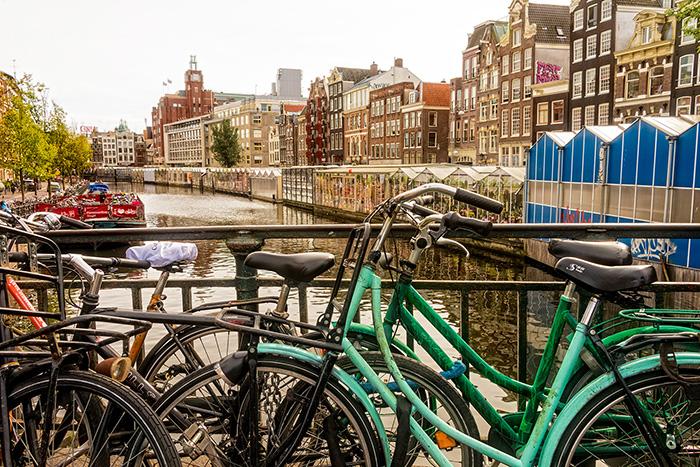 Amsterdam Bikes and Flowers wb.jpg