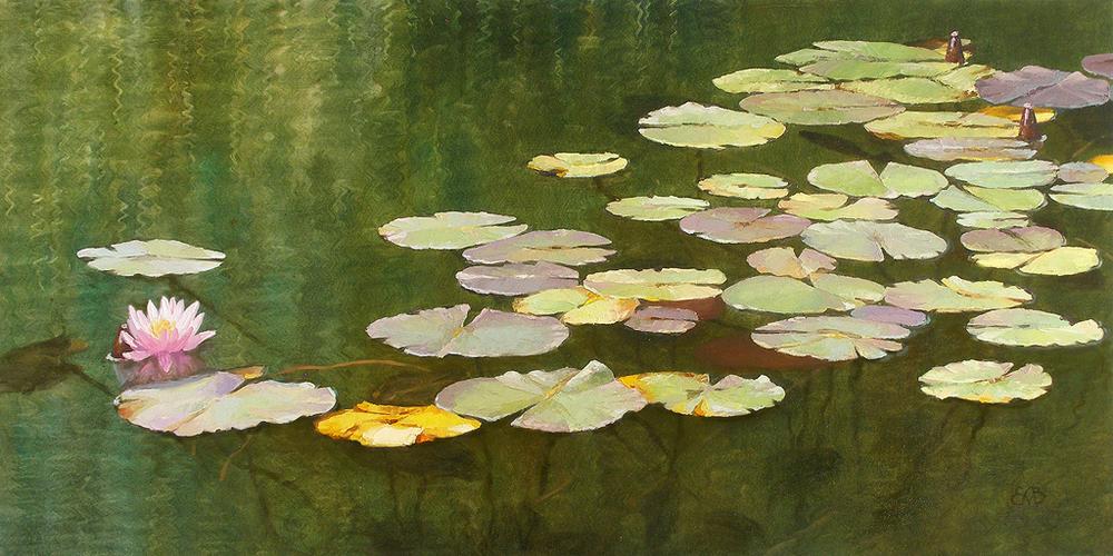 Lily Pond.jpg