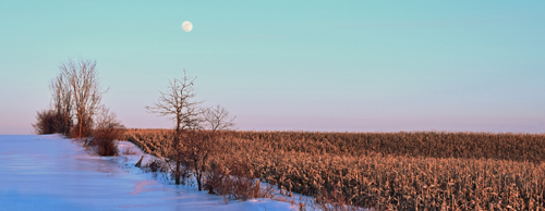 Jerome Maggiore-Winter Moon Over Field.jpg