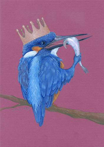 CMDUFFY_KINGFISHER.jpg