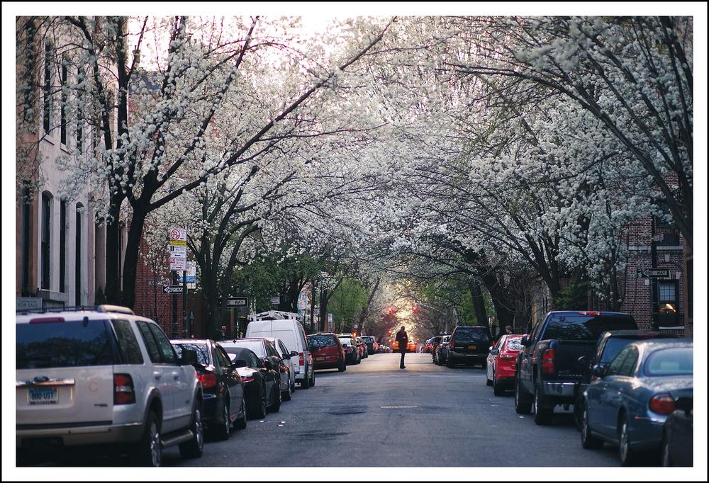 SWANKY NEW YORK