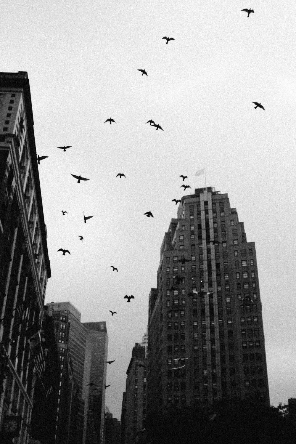 NYC-15.jpg