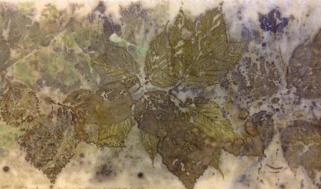 Eco printing showing distinct leaf images