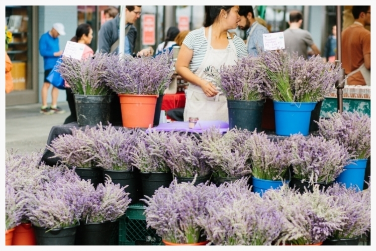 San Francisco Farmer's Market_Daidri Smythe Photography-12.jpg
