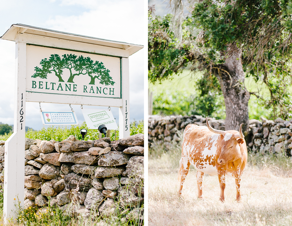 Beltane Ranch Wedding | D + A_9.jpg