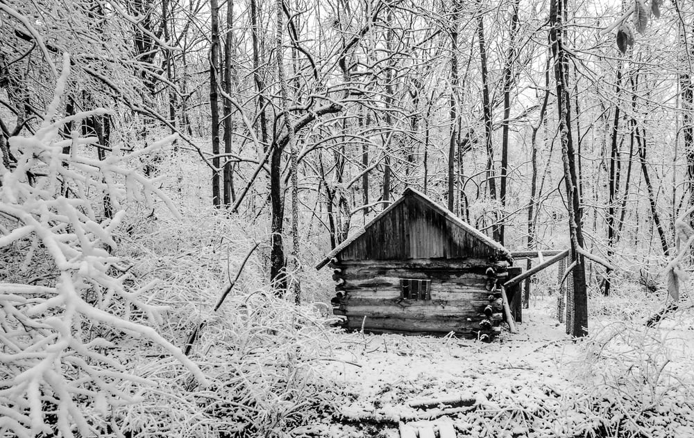 Cabin in the Woods  Nikon D7000 ISO 250 f/11 1/50 sec.