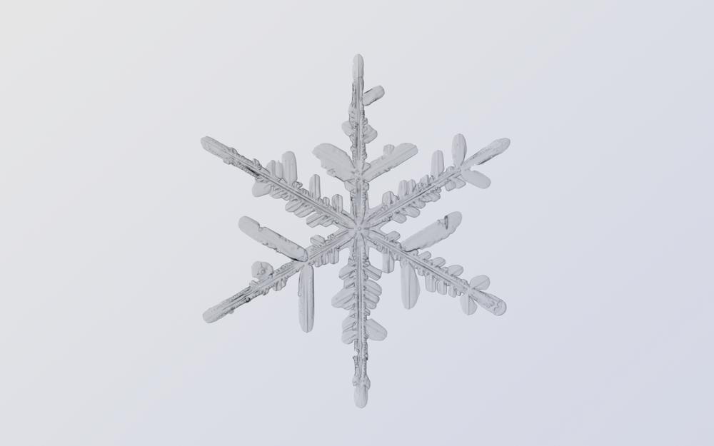 Snowflake Nº 4