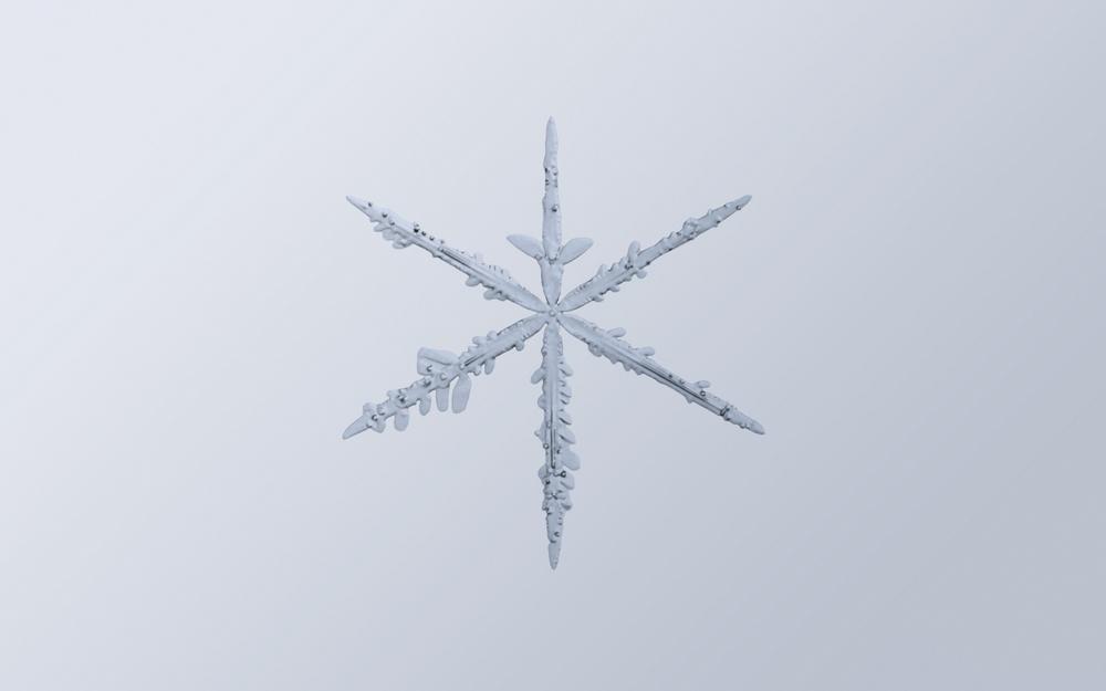 Snowflake Nº 5