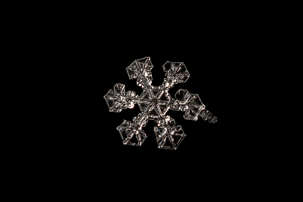 Snowflake Nº 8  Nikon D750 and 28mm lens reversed on ~67mm of extension tubes, ISO 500 f/8 1/100 sec.