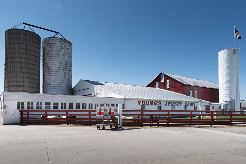 Young's Dairy  ISO 250 24mm f/10 1/1000 sec.