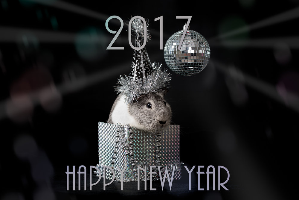 Chantelle wishes everyone a Happy New Year!