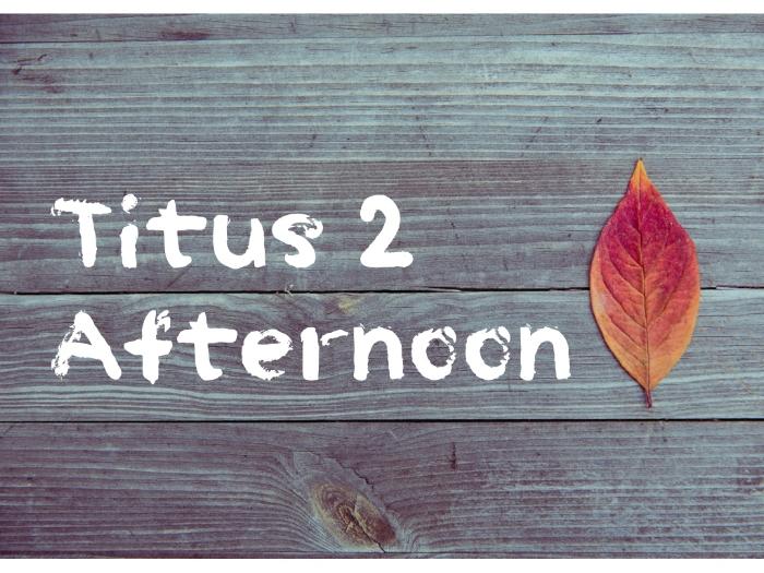 Titus 2 flyer.001.jpeg