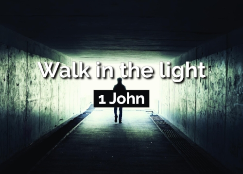 Walk in the Light NEW -Front 1-01.jpg