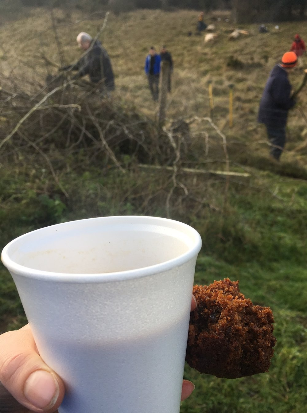 20170121 cake and tea.jpg