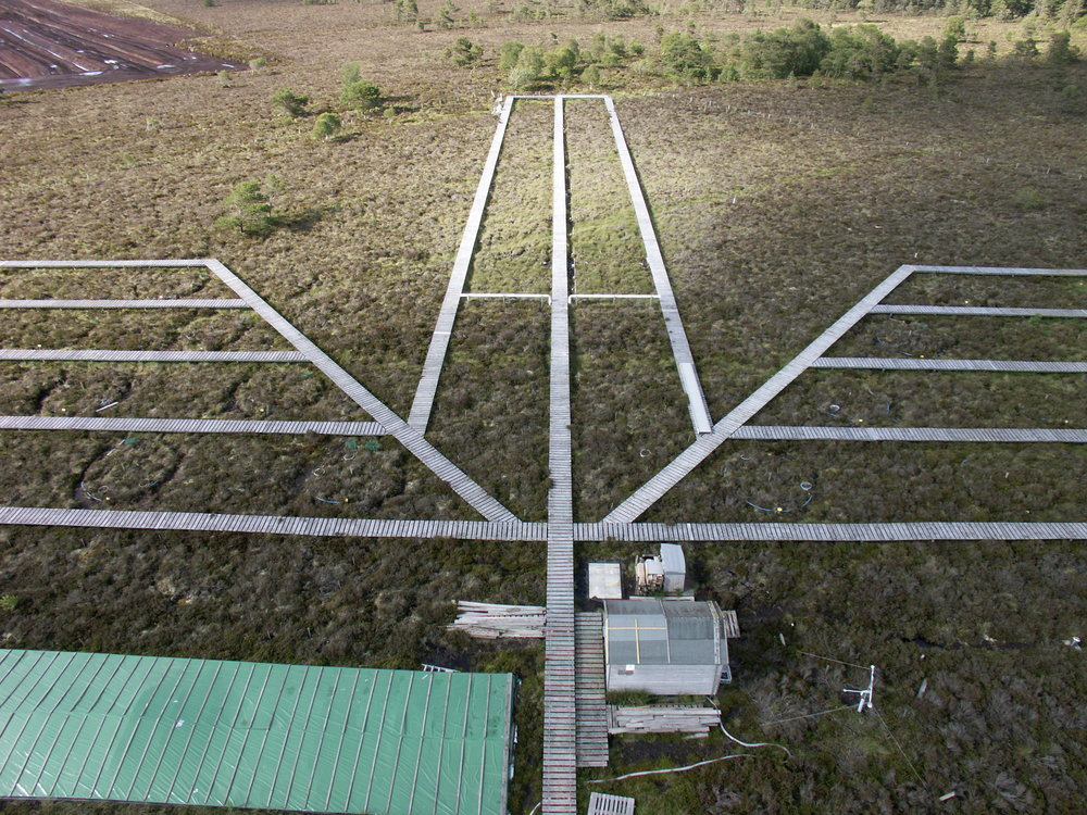 AERIAL VIEW OF WHIM BOG LTE, SHOWING DUCKBOARDS, RAIN COLLECTORS & SITE CONTROL SHED