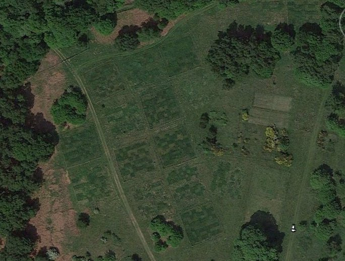 aerial view of nash field plots
