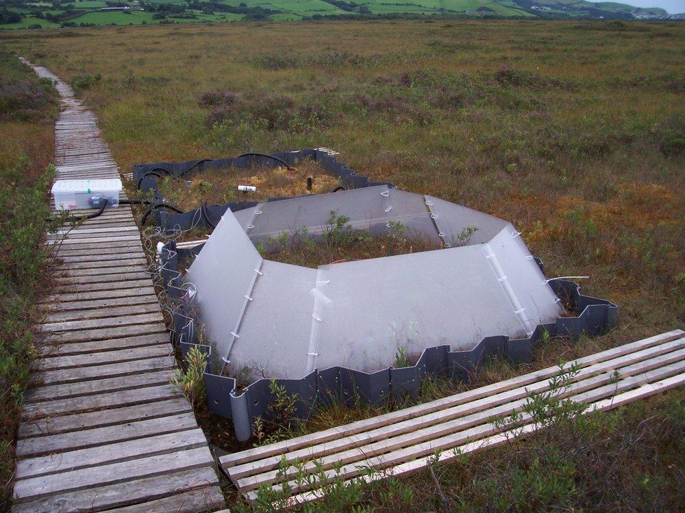 cors fochno lte, near Aberystwyth, wales
