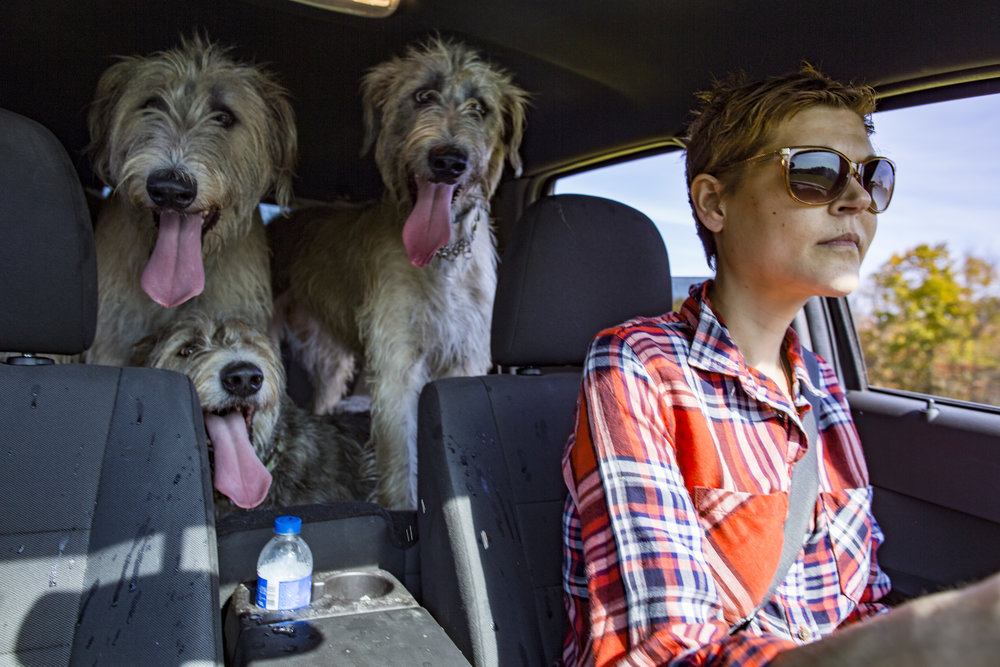 Cat L'Heureux drives her dogs, Walter, Dani and Tom, to her mom's house after walking them on the farm in Athens, Ohio on October 22, 2015.