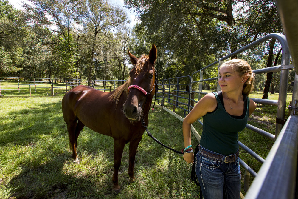 Sam VanFleet walks out of the round pen with four-year-old Fiesta – her most recent Mustang rescue from Utah – in Williston on September 25, 2018. VanFleet is training First for a competition in Fort Worth, Texas in January where the horse will be auctioned off. VanFleet has been rescuing and training horses since she was 12-years-old.