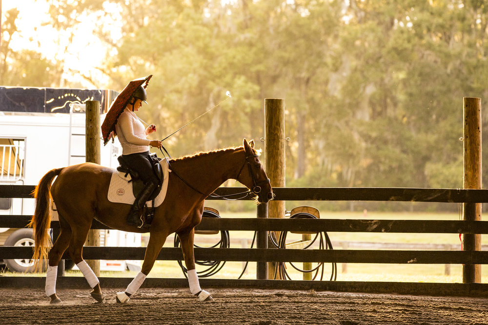 Lauren Barwick, a gold and silver medalist in dressage at the Paralympics, performs a demonstration for spectators during the MTRA's 10th anniversary celebration on October 18, 2018.