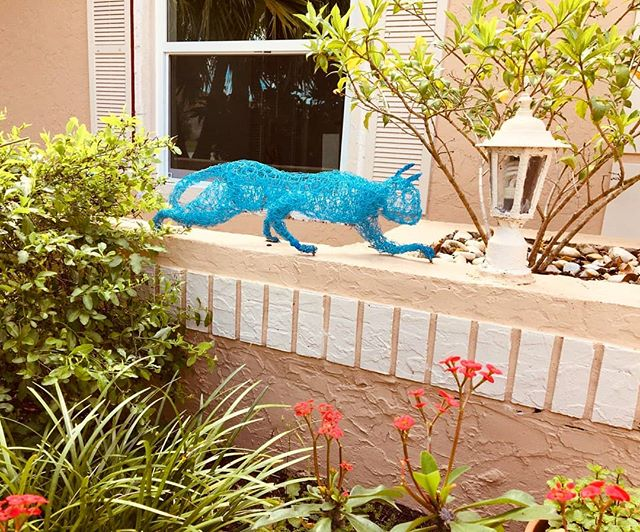 This blue stray found a new home in the Florida suburbs. · · · **Please message me if you have any inquiries** · · · #Strayones  #streetart #bkstreetart #guerillaart #montana #spraypaint #sprayart #bushwickartists #brooklyn #art  #bushwickstreetart #bushwickart #catsculpture #cat #sculpture #streetartsculpture #sculpturestreetart #wireart #nystreetart #nycstreetart #newyorkcity #nyart #Streetsculpture #nyc #graffiti #graffitiart #nycgraffiti