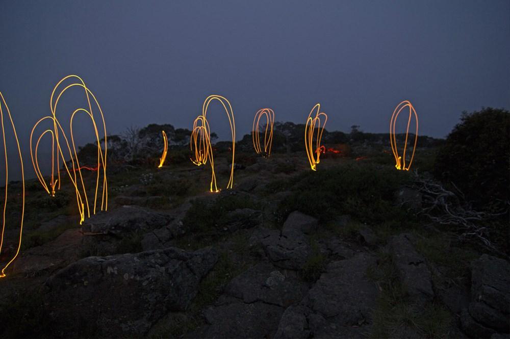 cameron-robbins-mt-jim-magnetic-anomaly-loops-ii-mona-01.jpg