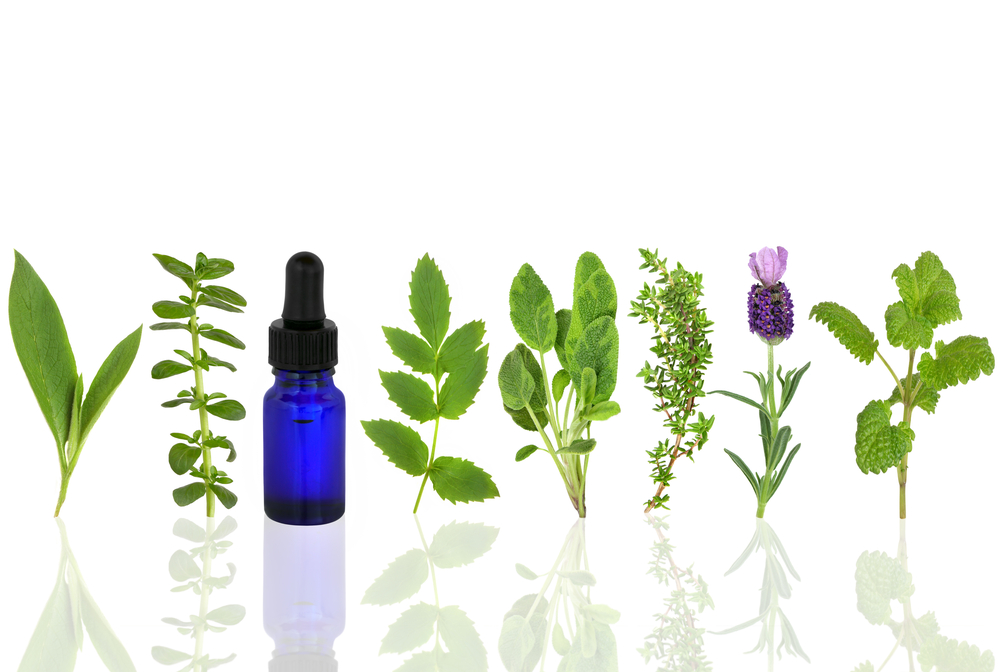essential oil and herbs