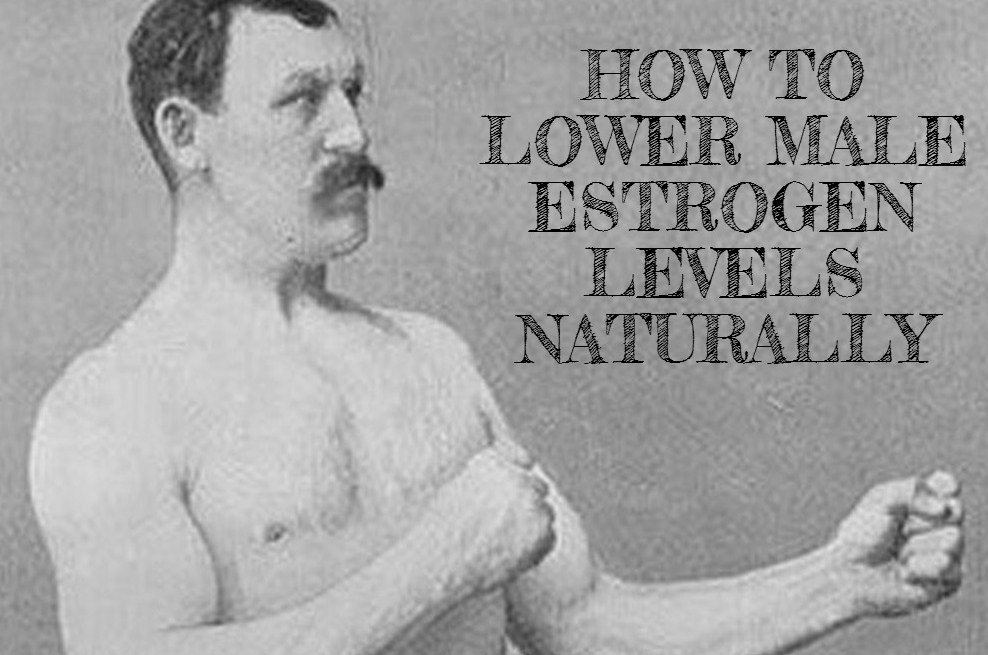 male-estrogen-levels-naturally
