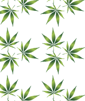 cannabis-1032131__340.png