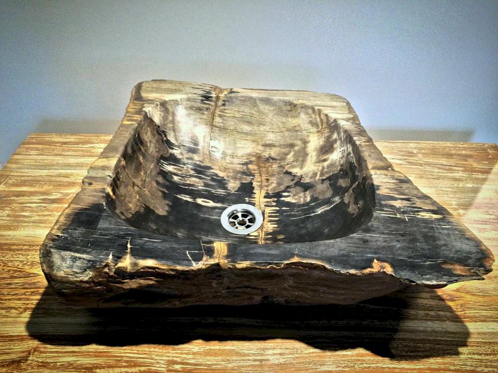 Fossil squar.jpg