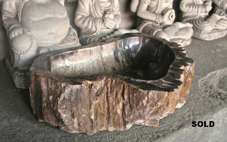 Раковина из окаменелого дерева 001