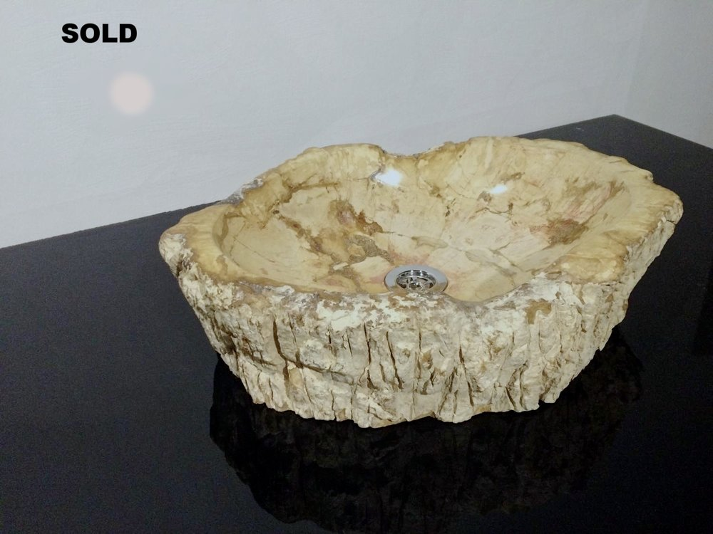 Раковина из окаменелого дерева кремовая