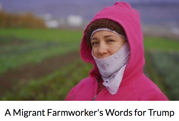 THE ATLANTIC : A Migrant Farmworker's Words for Trump. Originally titled  Una Mala Hierba // A Bad Weed . Reyna is an organic farmer in Ventura County who is a strong defender of environmental justice and farm worker rights. I shot/directed.produced this as part of the  America Heard Webseries . It was featured as an editor's pick on The Atlantic and was one of the channel's most watched videos. Edited by  Pilar Timpane.