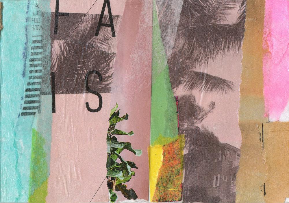tropical-jungle2_detail_web1800.jpg