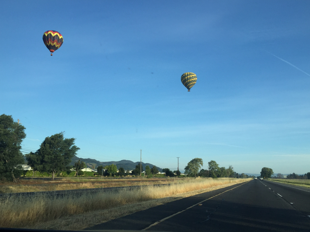Hot air balloons over sonoma.