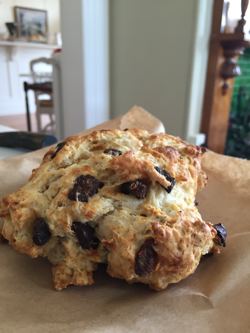 Currant Scone- I (Of Course) Thought it was chocolate Chip