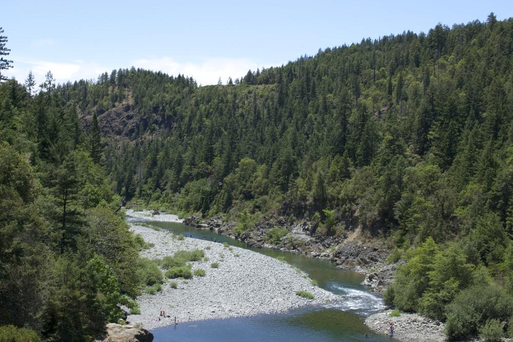 Jebediah Smith Redwoods State Park
