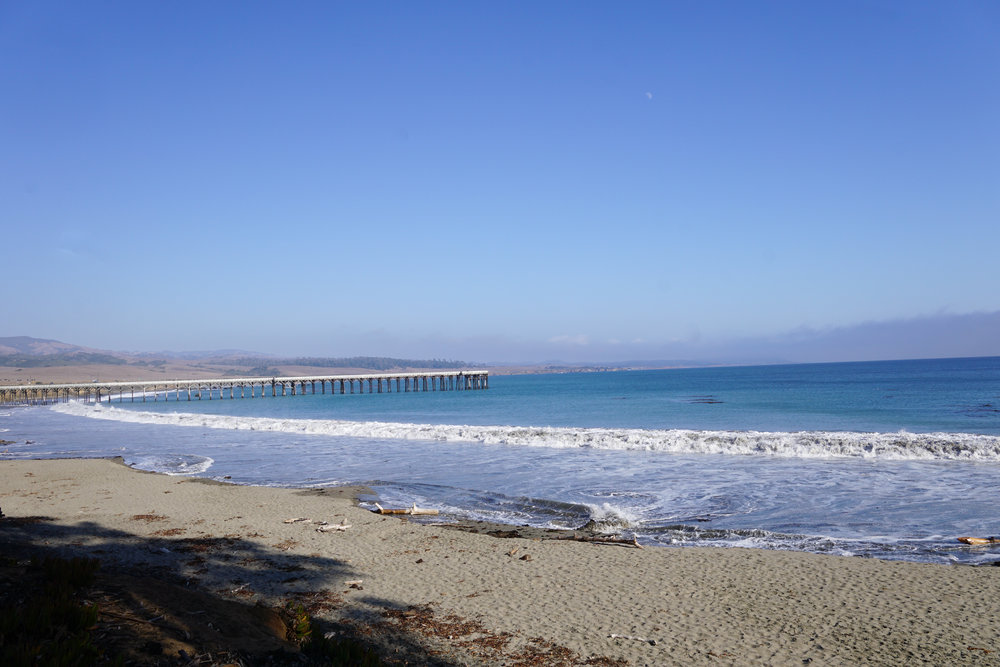 Sunny San Simeon, CA