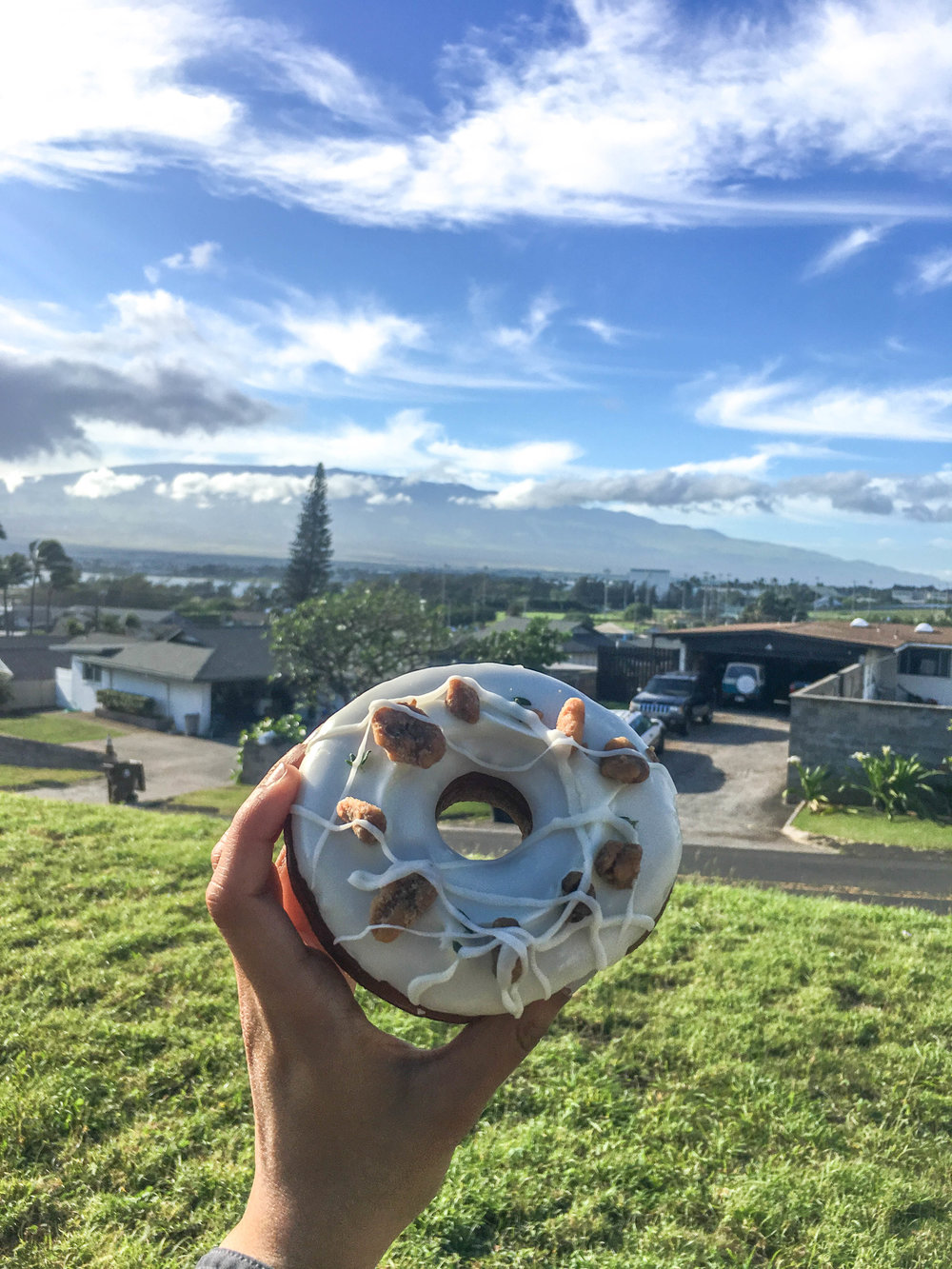 A donut from Donut Dynamite overlooking Haleakala.