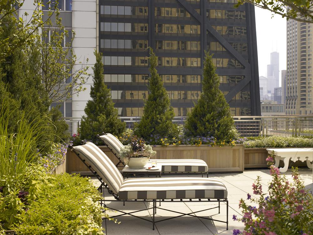 Kadlec Architecture + Design - Urban Terrace Residence 5.jpg