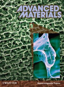 advancedmaterials2009.jpg