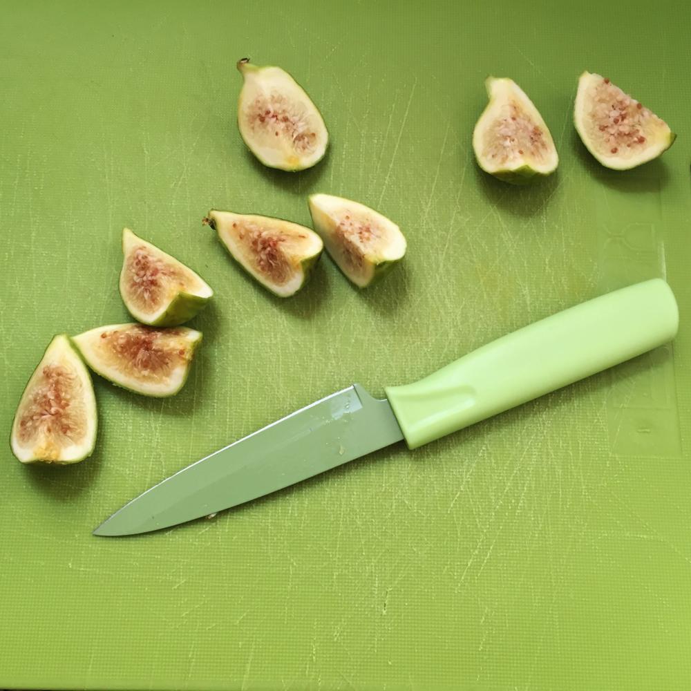 Canvas Styling Cut Figs