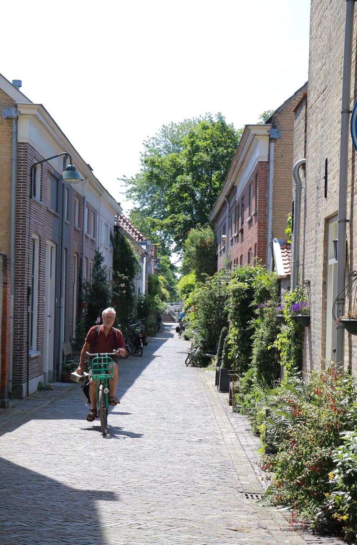 Delf-street-view