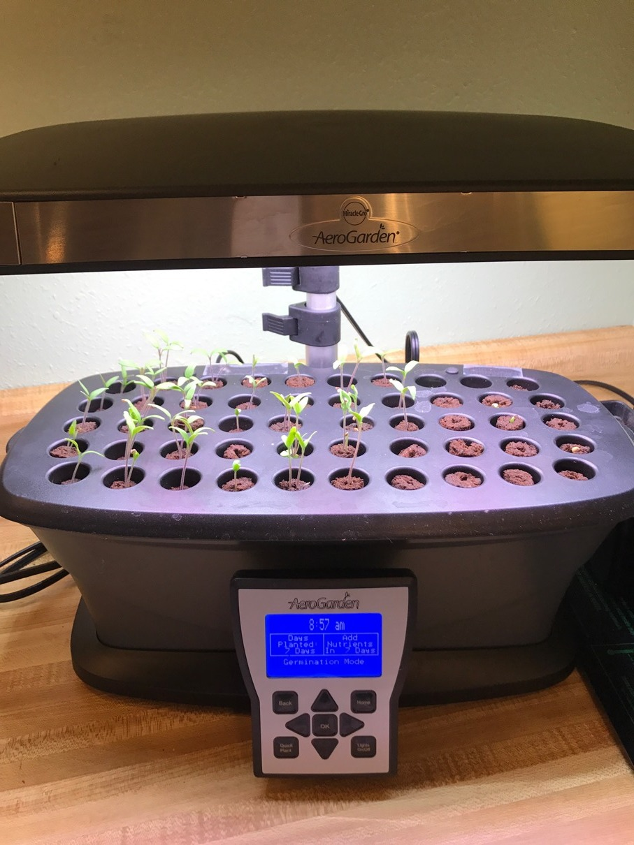 Aerogarden Seed Starter