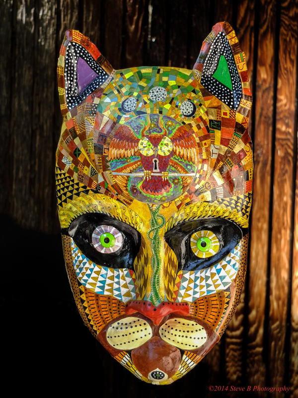 Staring Green-Eyed Cat Mask by Diego Marcial Rios