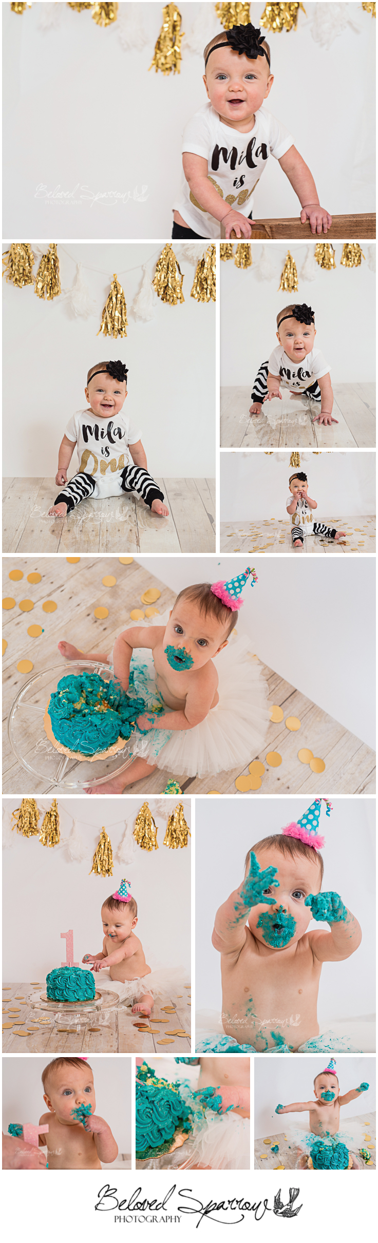 Forsyth County GA Cake Smash Photographer