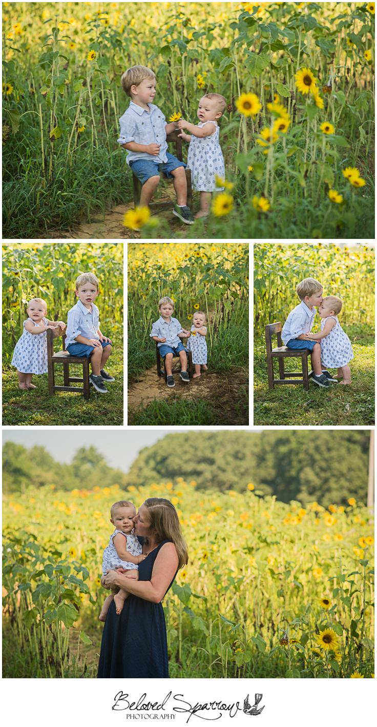 Family Sunflower Pictures in North Georgia, Cumming