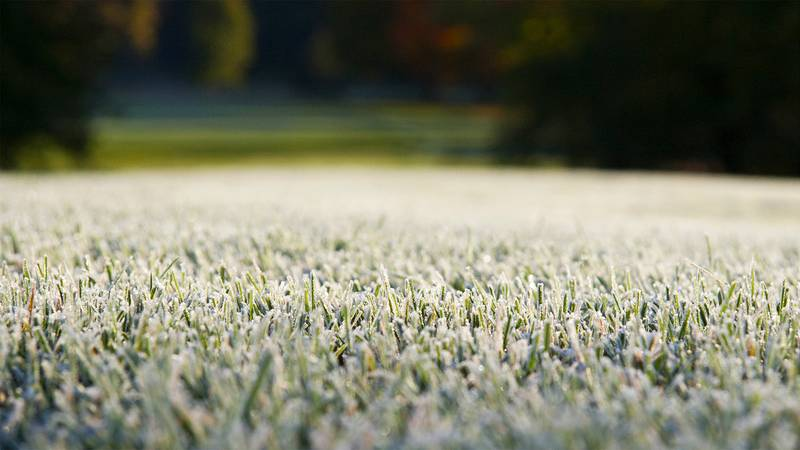 Expect Spring Frost Delays -